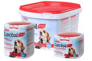 Beaphar Lactol puppymelk is een volwaardige melkvervanger voor moederloze puppy's. Aanvullende melkvoeding voor pasgeboren puppy's, zogende puppy's, drachtige of zogende teven, zieke of herstellende volwassen honden.