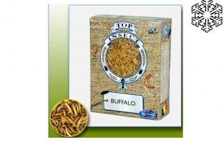 Topinsect Buffalowormen
