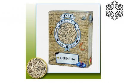 Topinsect Hermetia