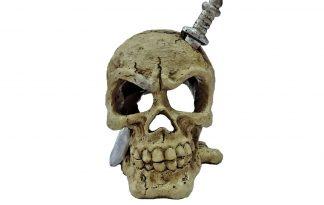 De Superfish Deco LED schedel is een leuk ornament voor in het aquarium of vissenkom met mogelijkheid tot verlichting. Daarnaast is het zo ontworpen dat het ruime heeft voor deDecoLED SpotenBubble Kit.