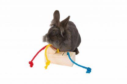De Trixie Snack Cube is voorzien van gekleurde sisaltouwtjes, waardoor kleine dieren bij de heerlijke beloning komen. Wanneer het dier aan de touwtjes trekt komt de beloning tevoorschijn. Daarnaast zorgen de luchtgaatjes ervoor dat de geur van de traktatie goed te ruiken is! Een echte mentale uitdaging voor jouw parkiet, papegaai of konijn!