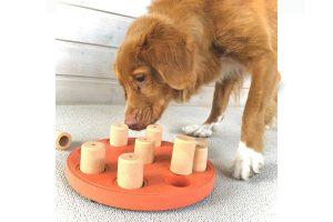 De Nina Ottosson Dog Smart hondenpuzzel biedt mentale uitdaging voor honden. Het zelf oplossen van puzzels geeft een hond meer zelfvertrouwen. Samen met jouw hond denkspelletjes doen ondersteunt de band, waardoor deze nog sterker wordt. Dit denkspel is voorzien van kegeltjes waar je iets lekkers onder kan verstoppen.