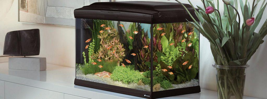 Aquariumtechniek toegelicht