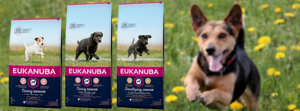 Eukanuba is vernieuwd!
