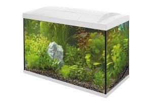 De Superfish Start 70 Tropical Kit is een complete starterkit met energiezuinige LED-verlichting, binnenfilter en handige accessoires voor de aquariumhobby.