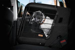 De 4Pets Caree vervoersbox is een revolutionaire transportbox voor kleinere honden en katten. Ontworpen voor de passagiersstoel van uw auto.