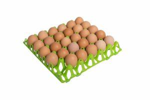 Het Ei-tray kippeneieren is ideaal om te gebruiken in bijvoorbeeld de R-Com 380. Geschikt voor 30 eieren van maat 49 mm. Makkelijk en veilig uw eieren beheren.