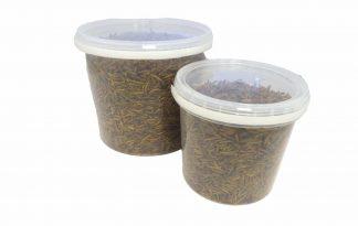 De Huismerk Verwenmix bestaat uit meelwormen en Black Soldier Fly. Deze voedzame traktatie kan gevoerd worden aan kippen, eenden, watervogels, reptielen en andere insecteneters.
