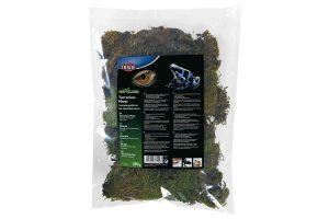 Het Trixie terrariummos is een substraat voor regenwoudterraria. Dit mos behoudt en verhoogt de luchtvochtigheid in uw terrarium.