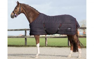 De QHP staldeken start collection zorgt ervoor dat uw paard of pony ook warm blijft bij koud of tochtig weer. Een staldeken is beter ademend dan een weidedeken, daarnaast is deze deken erg licht van gewicht.
