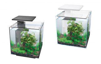 De SuperFish QubiQ 30 PRO past door het prachtige ontwerp in elk interieur. Het QubiQ aquarium is geschikt voor mensen met weinig of geen ervaring doordat het ontwerp makkelijk is in gebruik. Hierdoor is het ideaal voor mensen die op zoek zijn naar een mooi aquarium, maar weinig tijd willen besteden aan het onderhoud.