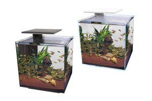 De SuperFish QubiQ 60 PRO past door het prachtige ontwerp in elk interieur. Het QubiQ aquarium is geschikt voor mensen met weinig of geen ervaring doordat het ontwerp makkelijk is in gebruik. Hierdoor is het ideaal voor mensen die op zoek zijn naar een mooi aquarium, maar weinig tijd willen besteden aan het onderhoud.