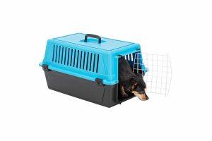 De Ferplast Atlas EL 10 vervoersbox is een transportkooi van kunststof voor kleine honden, pups of katten. Deze vervoersbox is ideaal te gebruiken wanneer u op vakantie gaat of voor een tripje naar de dierenarts.