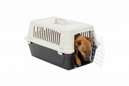 De Ferplast Atlas EL 10 vervoersbox is een transportkooi van kunststof voor kleine honden, pups of katten. Deze vervoersbox is ideaal te gebruiken wanneer u op vakantie gaat of voor een tripje naar de dierenarts. Deze transportbox is voorzien van een handgreep aan de bovenzijde, zo kan hij eenvoudig mee op pad.