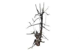 De Klimboom 003 is een gemaakt van gestraald fruitboom hout. Papegaaien en andere kromsnavels zijn gek op klimbomen, omdat ze kunnen klimmen en klauteren.