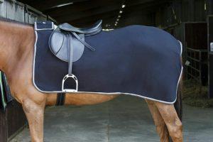 De Equi-Thème Riding World Fleece uitrijdeken is mooi afgewerkt met bies. Door het hoog absorberende materiaal is de deken snel droog.