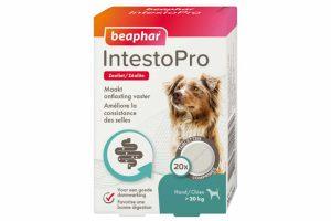 De Beaphar IntestoPro hond vanaf 20kg helpt darmproblemen te verlichten bij honden vanaf 8 weken oud. Het bevat het belangrijkste natuurlijke ingrediënt zeoliet wat helpt om de ontlasting vaster te maken.