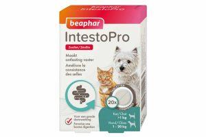 De Beaphar IntestoPro kat/hond tot 20kg helpt darmproblemen te verlichten bij honden en katten vanaf 8 weken en 1 kg lichaamsgewicht. Het bevat het belangrijkste natuurlijke ingrediënt zeoliet wat helpt om de ontlasting vaster te maken.