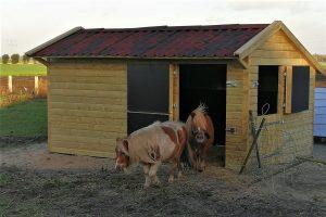 De maatwerk geïmpregneerde veestal 01 is een passende stal voor (klein) vee gemaakt van geïmpregneerd hout, bitumen golfplaten en degelijke scharnieren en sloten. Deze geïmpregneerde schuur is ideaal om uw tuinspullen veilig en droog in op te bergen! Inclusief deur en raam.