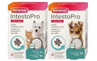 Beaphar IntestoPro kauwtabletten bieden verlichting bij honden en katten met darmproblemen vanaf 8 weken oud. Het natuurlijke ingrediënt zeoliet helpt onder andere om de ontlasting vaster te maken door het overtollige vocht op te nemen.