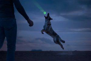 De 2 Glow Fetch en catch is een speeltje wat licht geeft in het donker en waarmee je ook in de avonduren samen met je viervoeter buiten kunt spelen. Perfect voor een leuk apporteer spelletje met jouw hond, daarnaast versterkt samen spelen de band tussen hond en baas.