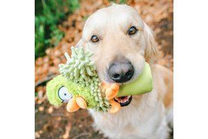 De Coockoo Oohoo bottle squeaker is een uitdagend speeltje voor jouw trouwe viervoeter! Het speeltje is niet alleen voorzien van een leuk design van microfiber, maar is gevuld met een krakend flesje en een piepje. Daarnaast is het speeltje duurzaam, doordat je het flesje via een opening aan de onderzijde kan vervangen. Zo kan jouw hond blijven genieten van het krakende geluidje.