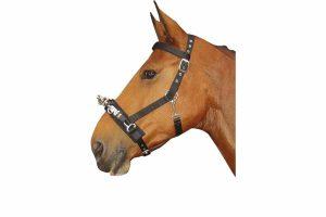 De Harry's Horse Kaptoom zwart is verstelbaar bij kopstuk, neusriem en de keel. Wordt ook wel longeerhalster genoemd. De front- en neusriem zijn tevens gevoerd.