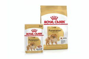 De Royal Canin Pomeranian Adult hondenbrok is speciaal afgestemd op een goede ontwikkeling en ondersteuning van het ras.