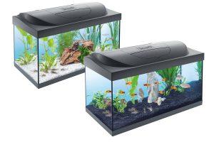 Tetra aquaria