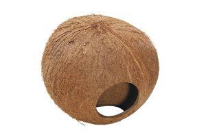 De Ebi Coconot Globehouse is een heerlijke verstopplaats voor kleine knagers, zoals hamsters of muisjes. Het huisje is gemaakt van kokos en sisal en is daardoor 100% natuurlijk en veilig! Maak het extra comfortabel met bodembedekking of juist een lekkere knaagdiersnack.