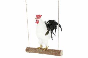 De Kerbl kippenschommel zorgt voor extra verrijking in het dierenverblijf. Door de lange meegeleverde touwen van maar liefst 300 cm kan je de schommel altijd op een geschikte plek ophangen. Daarnaast heeft de schommel een natuurlijke uitstraling, waardoor hij perfect in ieder kippenhok past.
