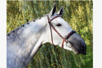 Het QHP neusnetje is zeer geschikt voor paarden met een pollenallergie of gevoelig zijn voor vliegen. Je kan het netje eenvoudig door middel van klittenband vastmaken aan de neusriem, waardoor het op elk hoofdstel of halster past.