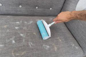 De Trixie pluizenroller XXL zorgt ervoor dat banken, kledingstukken en andere oppervlaktes weer snel haar- en stofvrij zijn! De stang is verstelbaar, waardoor je ook moeilijk bereikbare plekken eenvoudig schoon kan maken. Je kan de siliconenrol eenvoudig reinigen met water, zodat je hem kan blijven gebruiken!