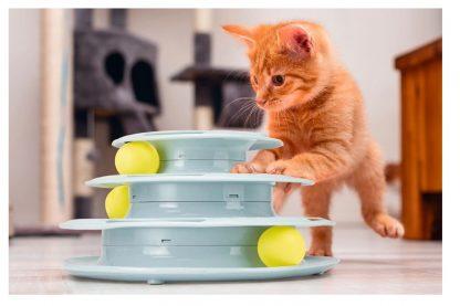 De Beeztees Bo kittenspeeltoren voorkomt dat kittens of katten zich gaan vervelen en daardoor 'kattenkwaad' uithalen.