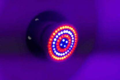 LED groeilamp LED close-up