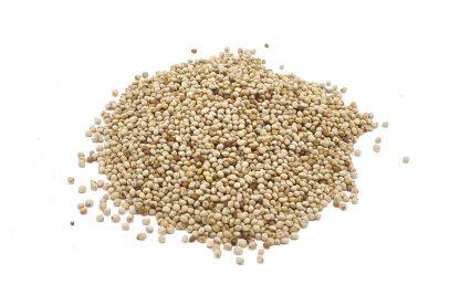 Wit perillazaad bevat meerdere onverzadigde vetzuren en is daardoor een goede toevoeging voor wildzang, kanaries en tropen.