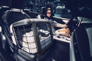 4Pets Caree vervoersbox voor honden