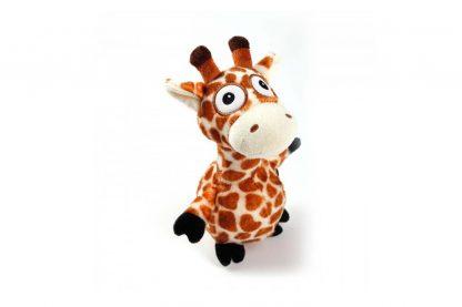 AFP Ultrasonic GHz Giraf