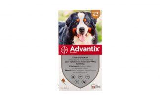 Bayer Advantix Spot-On 600/3000 vlooiendruppels