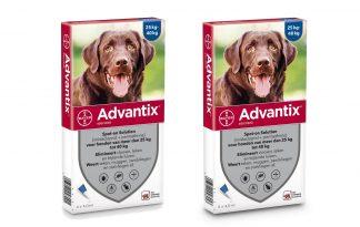 Bayer Advantix Spot-On 400/2000