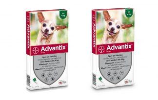 Bayer Advantix Spot-On 40/200
