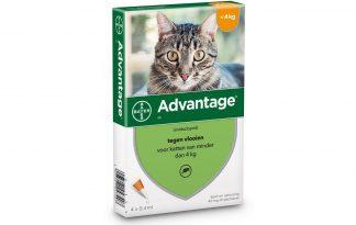 Bayer Advantage Spot-On