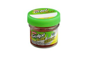 Berkley Gulp Alive Honey Worm is 100% biologisch
