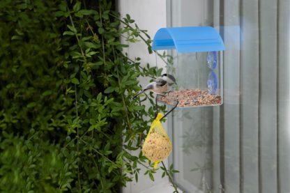Gardman raamvoederhuisje met vetbolhanger
