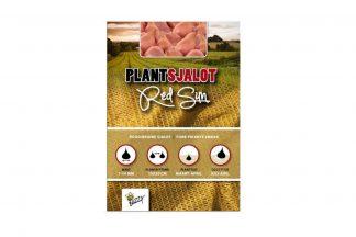 Met Buzzy Plantsjalotten Red Sun kunt u zelf een sjalot kweken met een fijne pikante smaak.