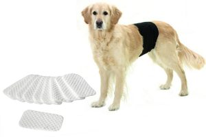 Hondenbroekjes en loopsheidbroekjes