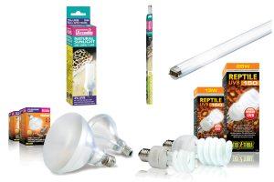 UV-lampen voor het terrarium
