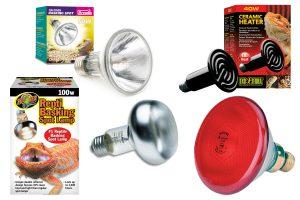 Warmtelampen en verlichting voor het terrarium