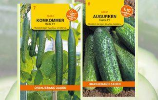 Augurken en komkommer zaden