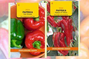 Paprika en peper zaden